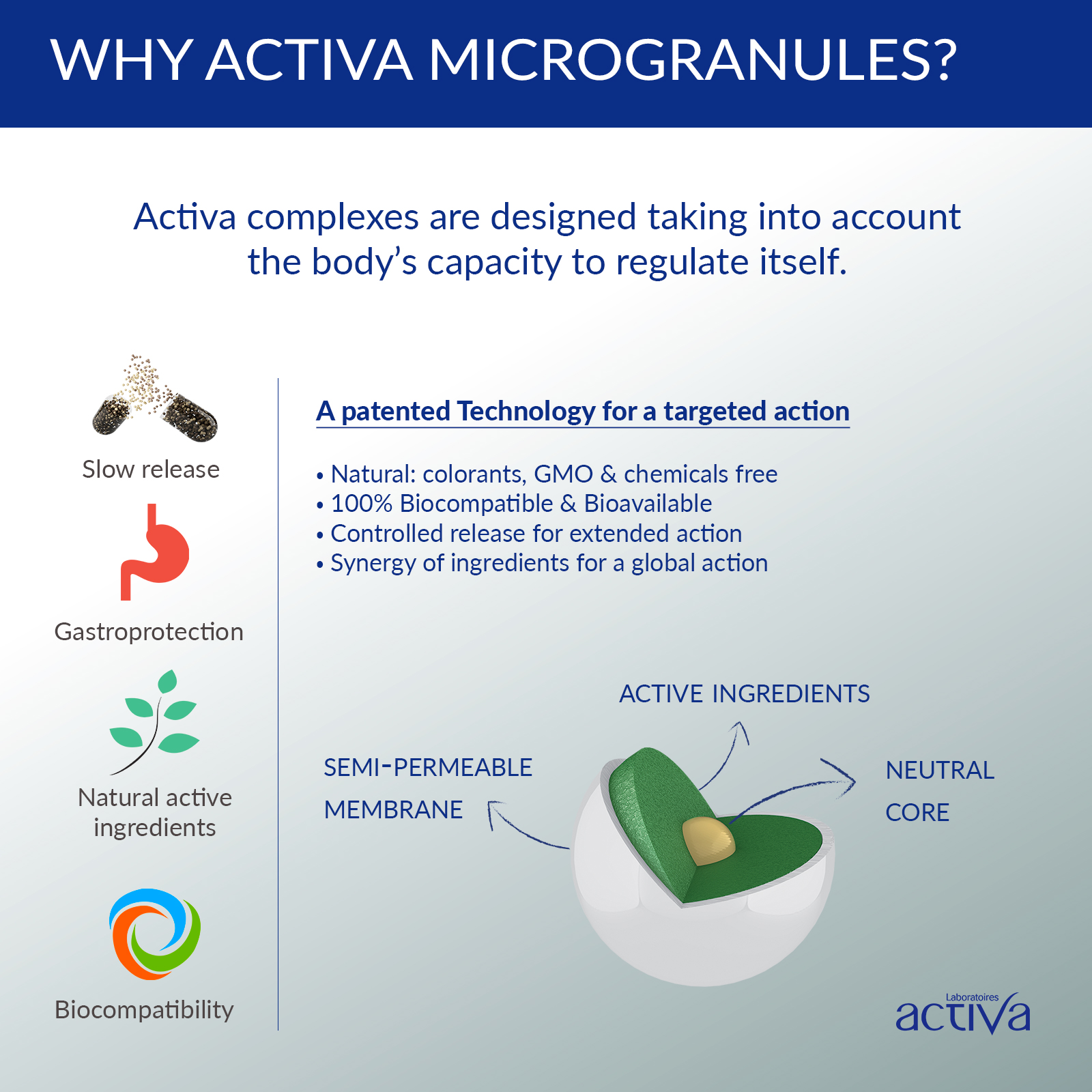 activa-well-being-memory-microgranule-natural-plant-picture-your-vitality-store-singapore-wellness-phytovitality-asia-supplements-fish-oil-omega-3