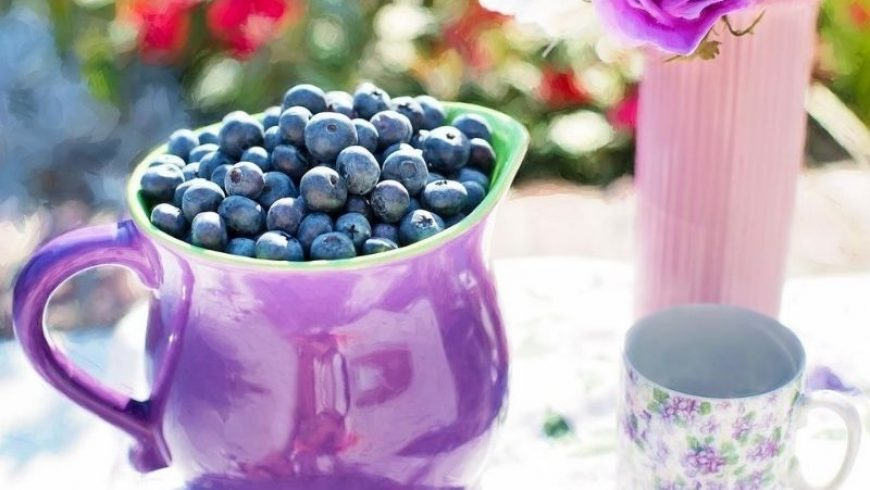 Blueberry the star ingredient for better blood circulation