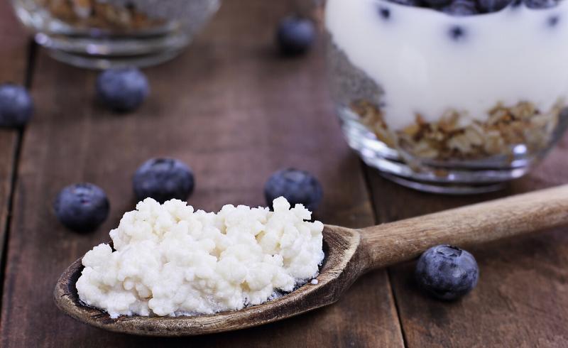 Immunity 101 – Microbiota: healthy gut for good immunity🌼